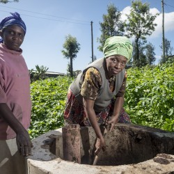 Hivos celebrated International Women's Day with women coffee producers